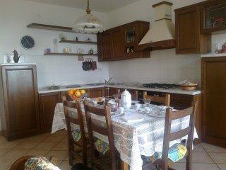 appartamento sulle colline Toscane - Montecchio vacation rentals