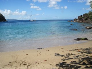 Harmony Hall Resorts,St.Vincent Sand Dollar 1bdrm - Kingstown vacation rentals