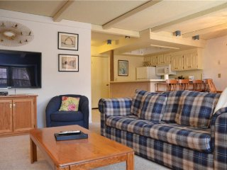 Longbranch Condos Unit 108 ~ RA76059 - Breckenridge vacation rentals