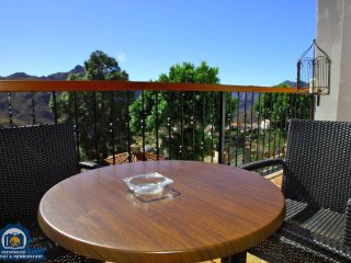 Nice 2 bedroom Apartment in Tejeda - Tejeda vacation rentals