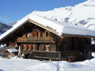 Chalet dans les Alpes Suisses idéalement situé - Les Diablerets vacation rentals