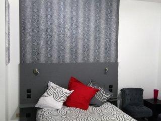 Appartement  N° 5 centre ville pour 2 pers - La Roche-sur-Yon vacation rentals