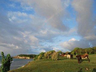 villa piscine le mapou à ste anne  pour 2 à 8 pers - Sainte Anne vacation rentals