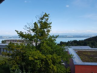1 bedroom Bed and Breakfast with Washing Machine in Neuchâtel - Neuchâtel vacation rentals