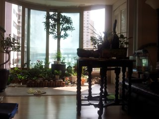 Modern Apartment with park view - Gyeonggi-do vacation rentals