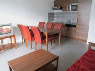 Appartement type F3  ds résidence 3*** - Aix-les-Bains vacation rentals