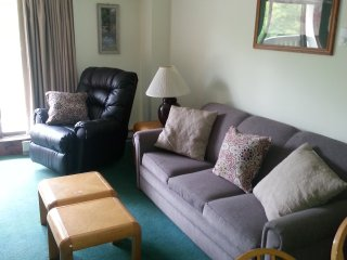 KILLINGT0N VT SKI 2 Br 1 &1/2 B  Condo . Sleeps 6 - Killington vacation rentals
