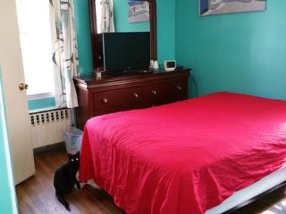 Nice Bedroom with Private 1/2 Bath - Brockton vacation rentals