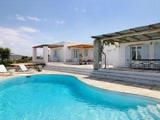 Witt, Sleeps 10 - Livadia vacation rentals