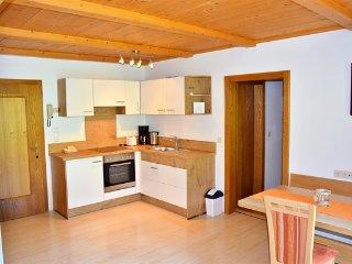 Brixental für 4-6 Personen für Ihren Wanderurlaub - Niederau vacation rentals