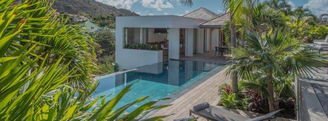 Villa Seven 5 Bedroom SPECIAL OFFER Villa Seven 5 Bedroom SPECIAL OFFER - Image 1 - Petit Cul de Sac - rentals