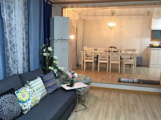 NEW OPEN! 7rooms+3bath with garden - Goyang-si vacation rentals
