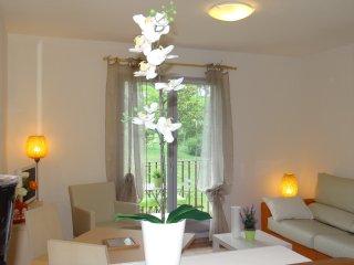 Studio 23 m2 face au golf & vue piscine - Mouans-Sartoux vacation rentals