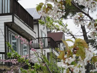 Nice House with Internet Access and A/C - Yeongdeok-gun vacation rentals