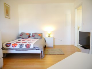 joli meublé avec balcon aux portes de STRASBOURG - Strasbourg vacation rentals