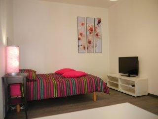 joli meublé à 5mn du centre ville STRASBOURG - Schiltigheim vacation rentals