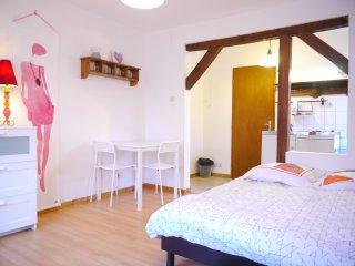 joli meublé  WIFI gratuit prox STRASBOURG  (fleur) - Strasbourg vacation rentals