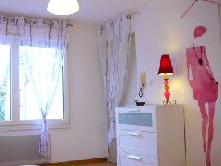 joli meublé avec  WIFI gratuit -le fleur - Bischheim vacation rentals