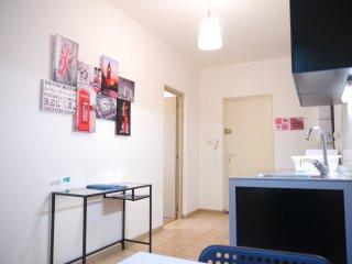 Le  lilas:  meublé avec wifi gratuit prox CENTRE - Schiltigheim vacation rentals