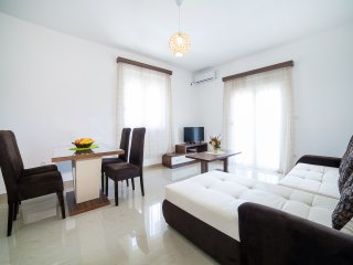 Apartments Vukovic-One Bedroom Apartment 2 - Bijela vacation rentals
