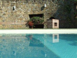 apartment in luxury restored farmhouse La Torre - Panzano vacation rentals