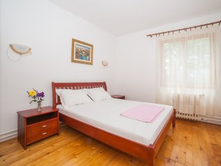 Guest House Radojicic - Triple Room with Bathroom and Shared Terrace 1 - Bijela vacation rentals