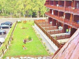 3 bedroom Condo with Internet Access in Agnieres en Devoluy - Agnieres en Devoluy vacation rentals