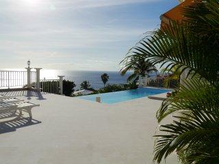 Villa luxe 5*,face à la mer,proche plages,piscine - Case-Pilote vacation rentals