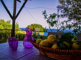 Apartment Actea in Villa Nesea - Nerano vacation rentals