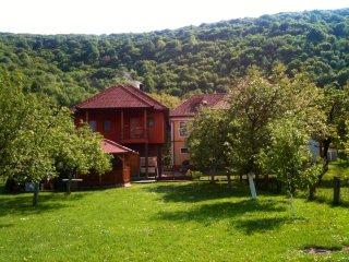 Beautiful 2 bedroom Bihac House with Balcony - Bihac vacation rentals