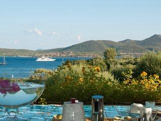 Comfortable Villa with DVD Player and Microwave - Porto Rotondo vacation rentals