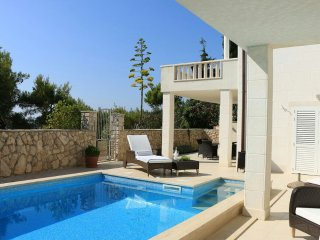 Luxury villa with pool near the sea in Primosten - Primosten vacation rentals