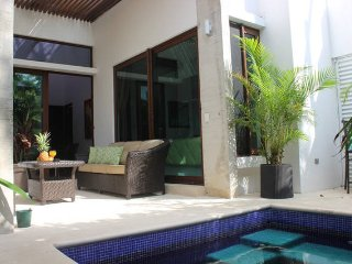 TH A2 Gorgeous Townhome Private Pool - Akumal vacation rentals