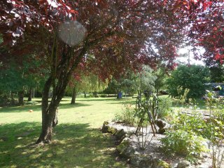 16th Century Rural Cottage with 1 acre garden - Saint-Etienne-du-Bois vacation rentals