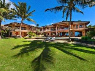 Banyan Cove - Paia vacation rentals