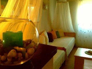 Holiday Homes near Split - Island of Solta - Rogac vacation rentals
