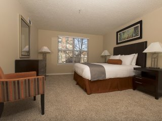 2 bedroom Apartment with Internet Access in Stamford - Stamford vacation rentals