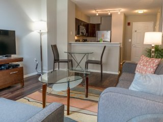 Furnished 2-Bedroom Apartment at Main St & Bank St White Plains - White Plains vacation rentals
