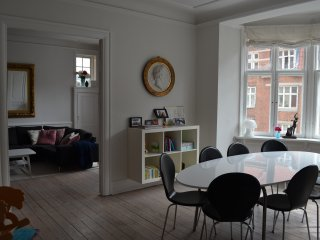 Spacious apartment in the heart of Frederiksberg - Frederiksberg vacation rentals