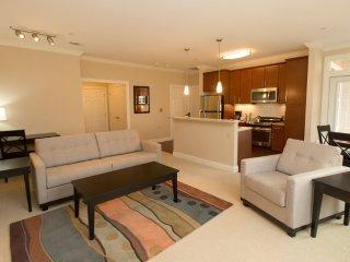 Furnished 2-Bedroom Apartment at Main St & Colt Hwy Cutoff Farmington - Farmington vacation rentals