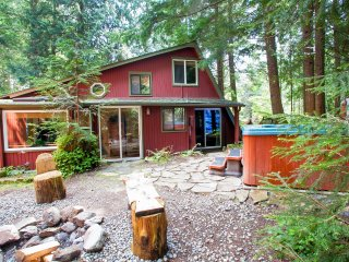 Award Winning Mt Rainier cabins sleeping 2 to 20 - Ashford vacation rentals