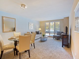1 bedroom Apartment with Internet Access in Oak Park - Oak Park vacation rentals
