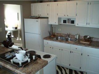 Furnished 1-Bedroom Apartment at W Higgins Rd & Grand Canyon Pkwy Hoffman Estates - Hoffman Estates vacation rentals