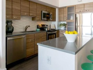 Furnished 2-Bedroom Apartment at Broad St & East St Tysons - McLean vacation rentals