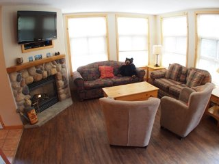 4 bedroom Apartment with Internet Access in Sun Peaks - Sun Peaks vacation rentals