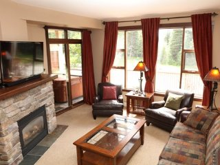 Bright 2 bedroom Sun Peaks Condo with Internet Access - Sun Peaks vacation rentals