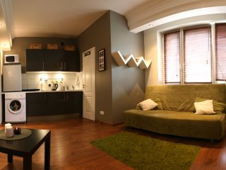 Very Central and Tastefully Decorated Studio Marszałkowska Apartment - Warsaw vacation rentals