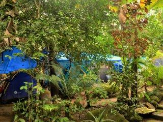 Camping da Cachoeira (tambem com hostel) - Vila do Abraao vacation rentals