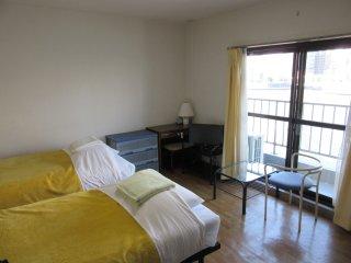Twin room type 2  Nihonbashi, Koto area in Tokyo - Koto vacation rentals