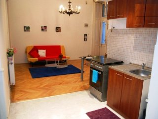 4 room central ferenc 2 - Budapest vacation rentals